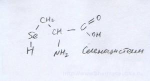 Селеноцистеин Selenocysteine http://www.pharmaceutika.ru/